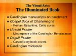 the visual arts the illuminated book