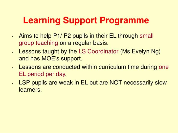 Learning Support Programme