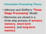 information processing theory1