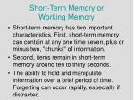short term memory or working memory