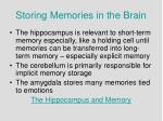 storing memories in the brain