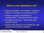 what is in the mathematics unit1