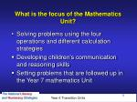 what is the focus of the mathematics unit