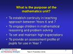 what is the purpose of the mathematics unit