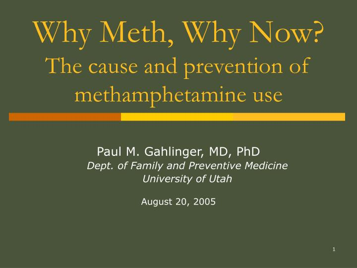 why meth why now the cause and prevention of methamphetamine use n.