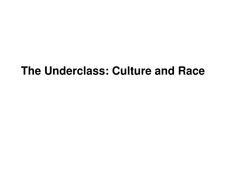 the underclass culture and race n.