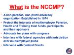 what is the nccmp