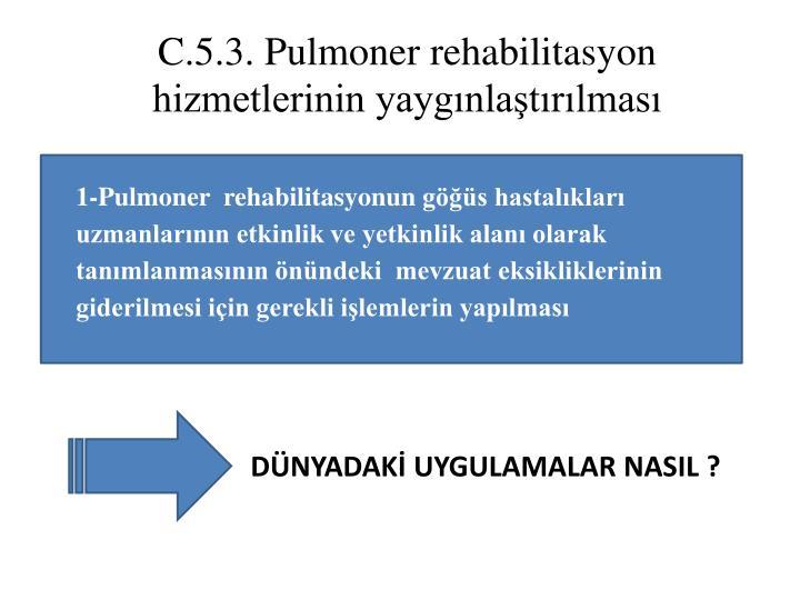 C.5.3.