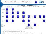 bandwidth efficiency multiplier