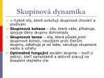 skupinov dynamika
