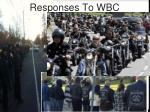 responses to wbc