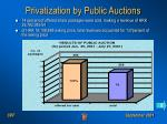 privatization by public auctions