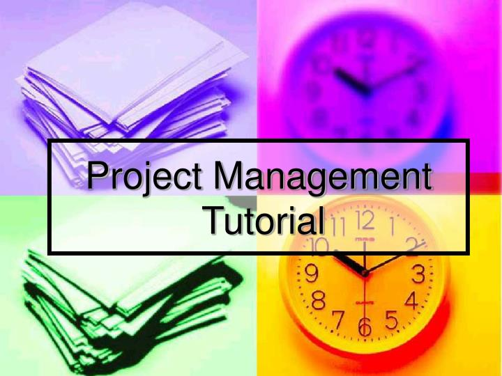 project management tutorial n.