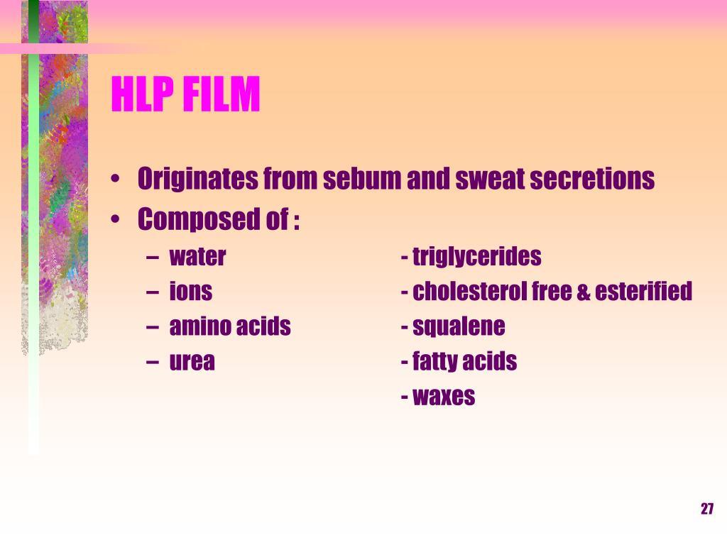 HLP FILM