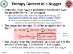 entropy content of a nugget