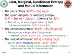joint marginal conditional entropy and mutual information