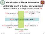 visualization of mutual information