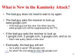 what is new in the kaminsky attack