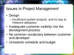 issues in project management1