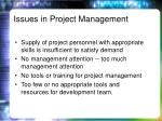 issues in project management2