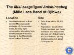 the misi zaaga igani anishinaabeg mille lacs band of ojibwe