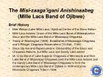 the misi zaaga igani anishinaabeg mille lacs band of ojibwe1