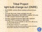 tribal project light bulb change out dnre