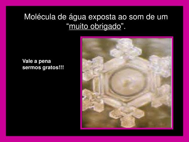 """Molécula de água exposta ao som de um """""""