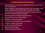 5 3 bacteria food infection