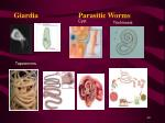 giardia parasitic worms