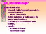 bvi contentmanager