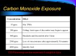 carbon monoxide exposure