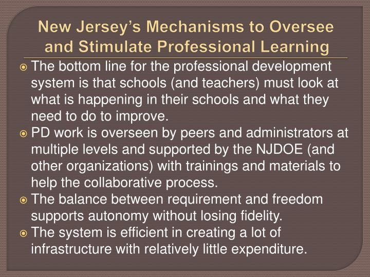 New Jersey's Mechanisms to Oversee and Stimulate Professional Learning