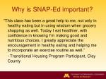 why is snap ed important1