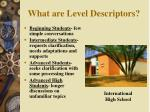 what are level descriptors