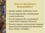 what are the district s responsibilities