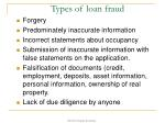 types of loan fraud
