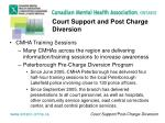 court support and post charge diversion3