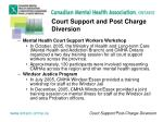 court support and post charge diversion4