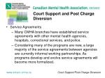 court support and post charge diversion5