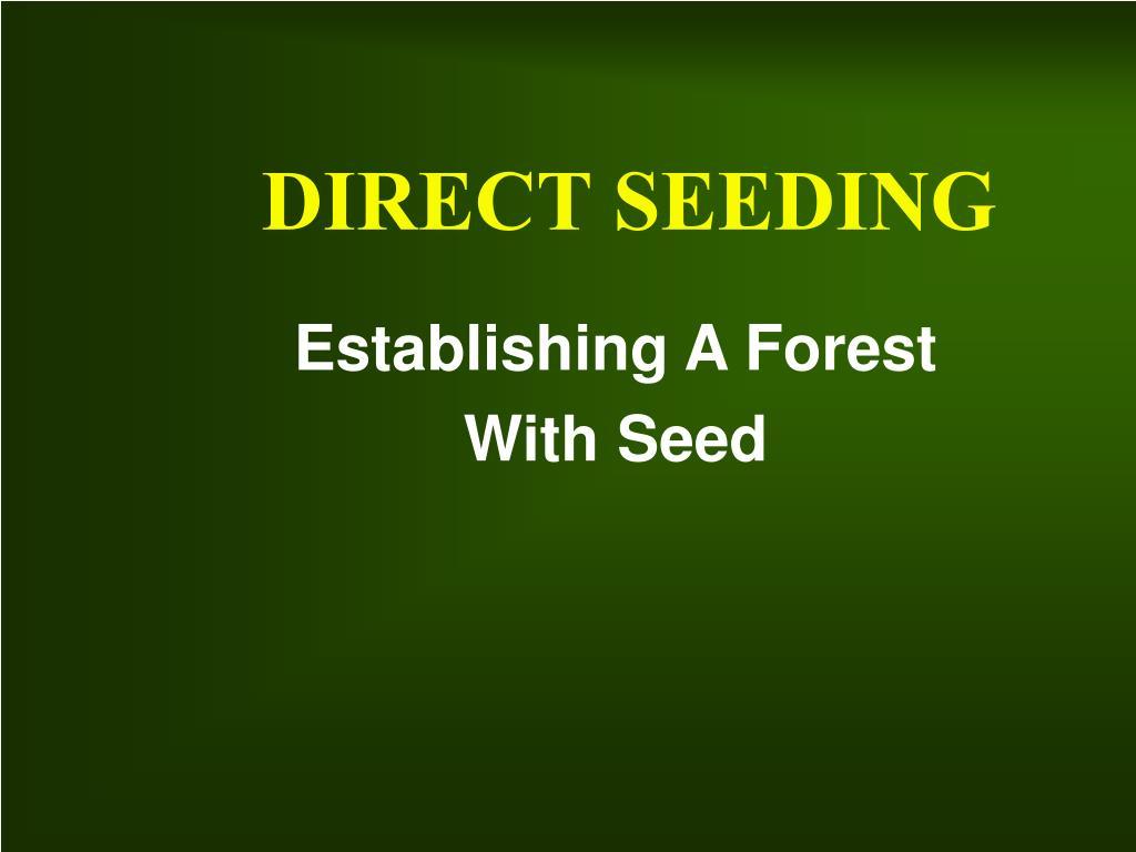 direct seeding l.