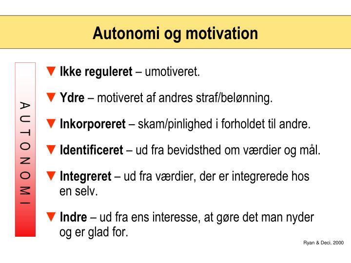 Autonomi og motivation