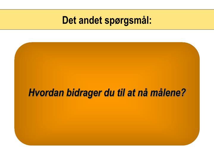 Det andet spørgsmål: