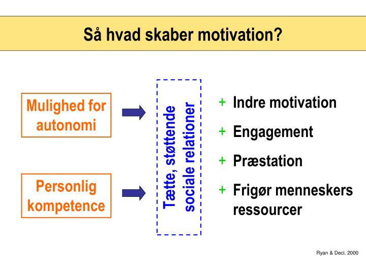Så hvad skaber motivation?