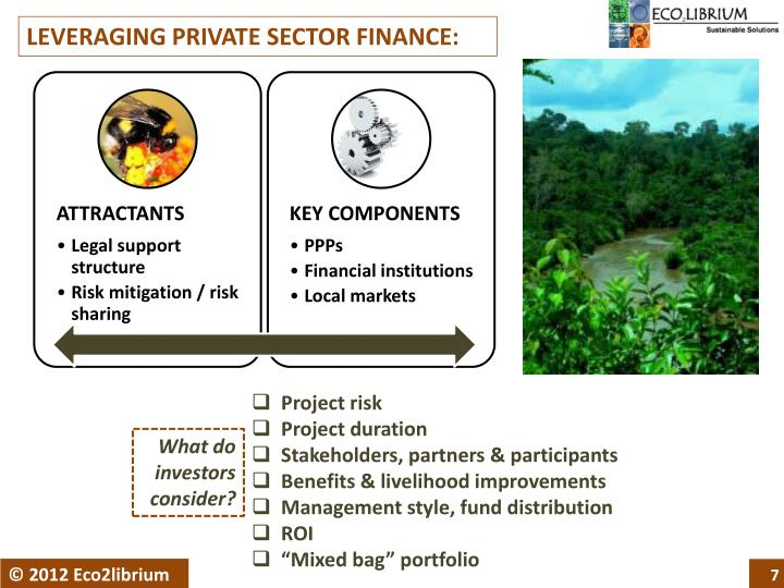 LEVERAGING PRIVATE SECTOR FINANCE: