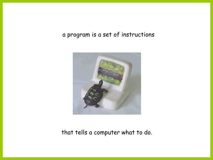 A program is a set of instructions
