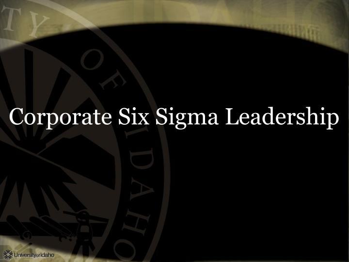 Corporate Six Sigma Leadership