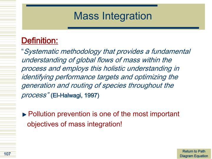 Mass Integration