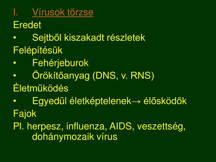 Vírusok törzse