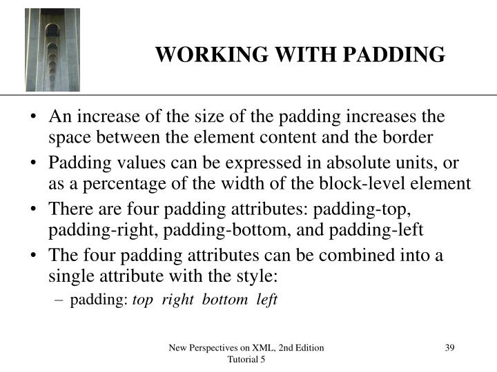 WORKING WITH PADDING